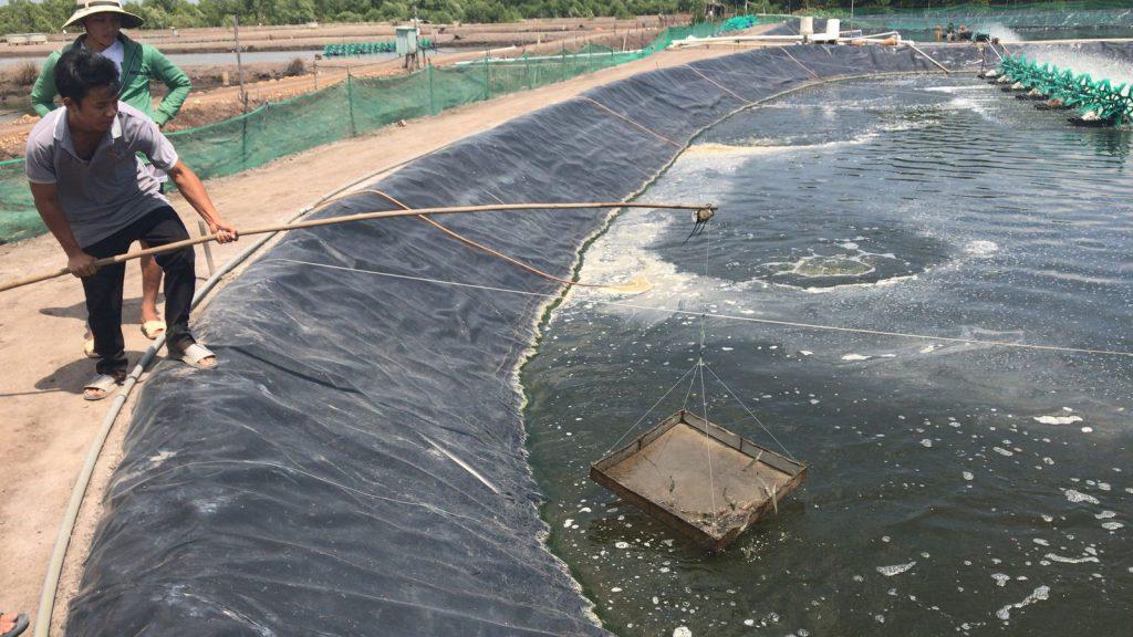 IIX develops aquaculture knowledge base