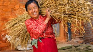 Gender Transformative and Responsible Agribusiness Investments in South East Asia (GRAISEA) Program, Swedish International Development Cooperation Agency