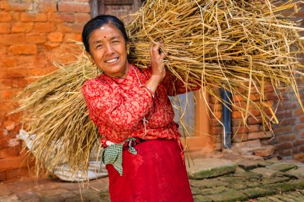 Gender Transformative and Responsible Agribusiness Investments in South East Asia (GRAISEA) Program – IIX Partnership, 2018