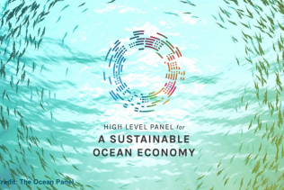 Ocean Finance: Financing the Transition to a Sustainable Ocean Economy