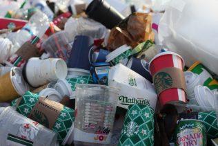Sector Brief: Waste Management